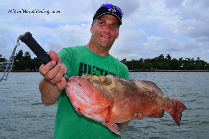 Miami bonefishing flats fishing charters on biscayne bay for Grouper fishing florida